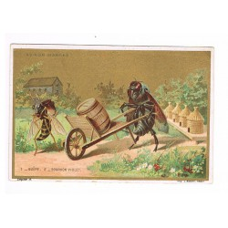 Small chromolithography